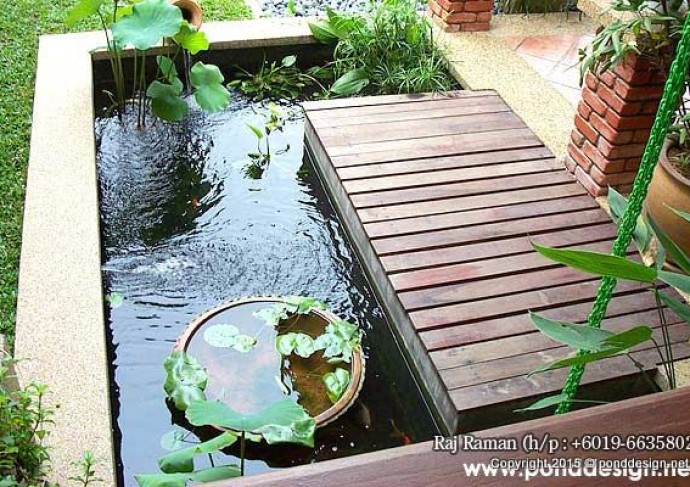 Aquatic plants pond with fish pond malaysia fountain for Garden pond design malaysia