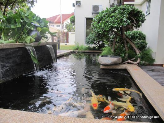 Fish Pond Design with Double Water Curtain